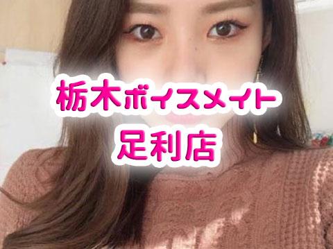 栃木ボイスメイト足利店)